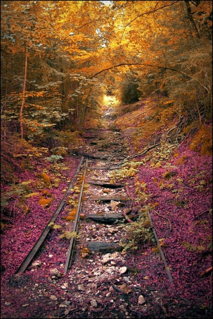 Missouri abandoned railroad track